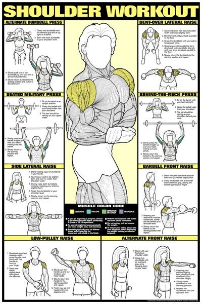 chest and shoulder workout