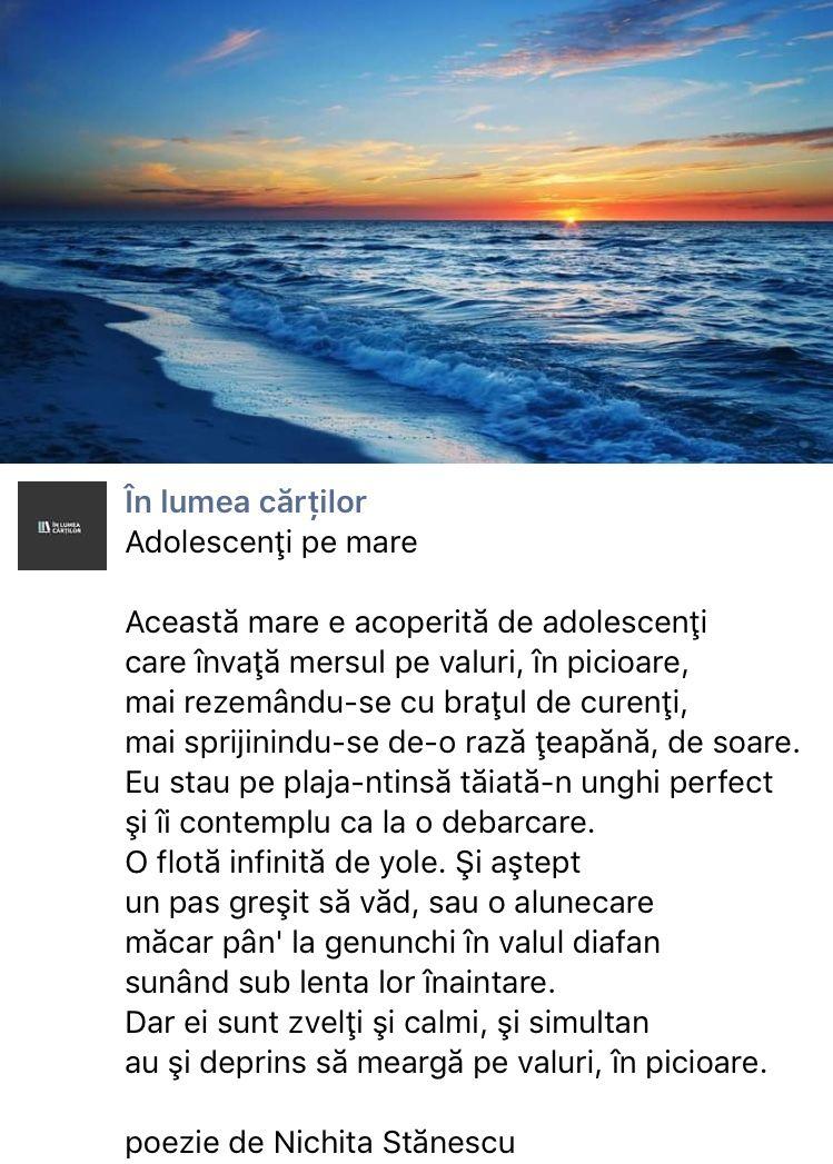 Referat Veche Intamplare Nichita Stanescu Rezumat - Referate