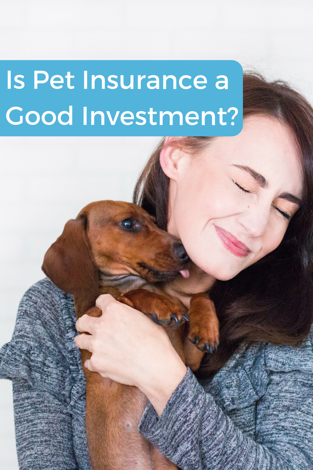 Pet Insurance A Good Investment Pet Insurance Reviews Pet