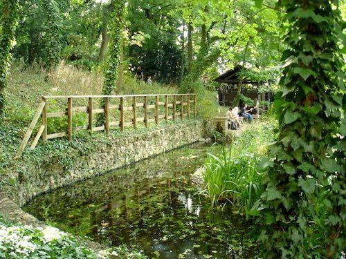 Un Jardin Sauvage En Plein Cœur De Paris Paris Visite Jardins