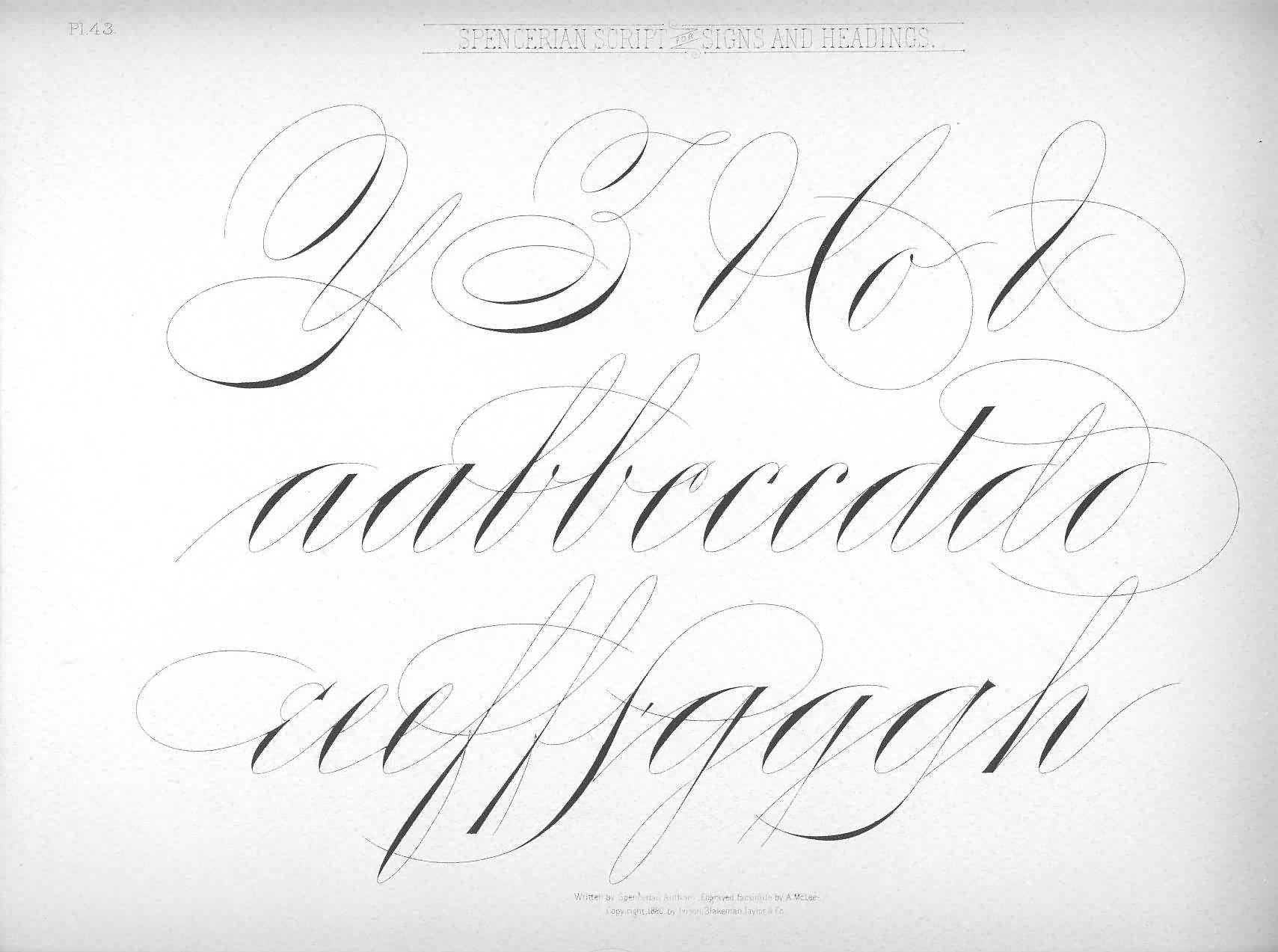 Penmanship Spencerian Script Spencerian Script Alphabet