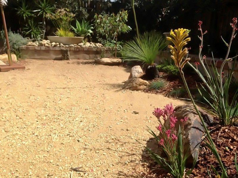 Australian Native Garden Landscape After Modern Native Garden - native garden design australia