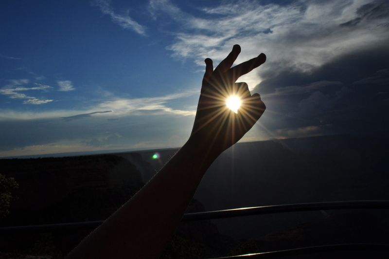 sun by Tessa Micul