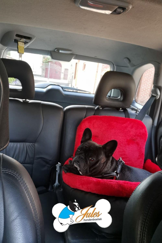 Hondenautostoel Zwart Merk Angel And Gladys Rode Binnenvoering Honden Autostoel Hondenaccessoires