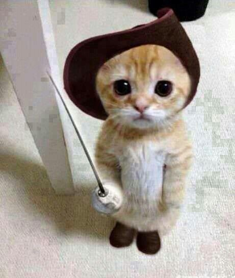 Its Puss in Boots!!