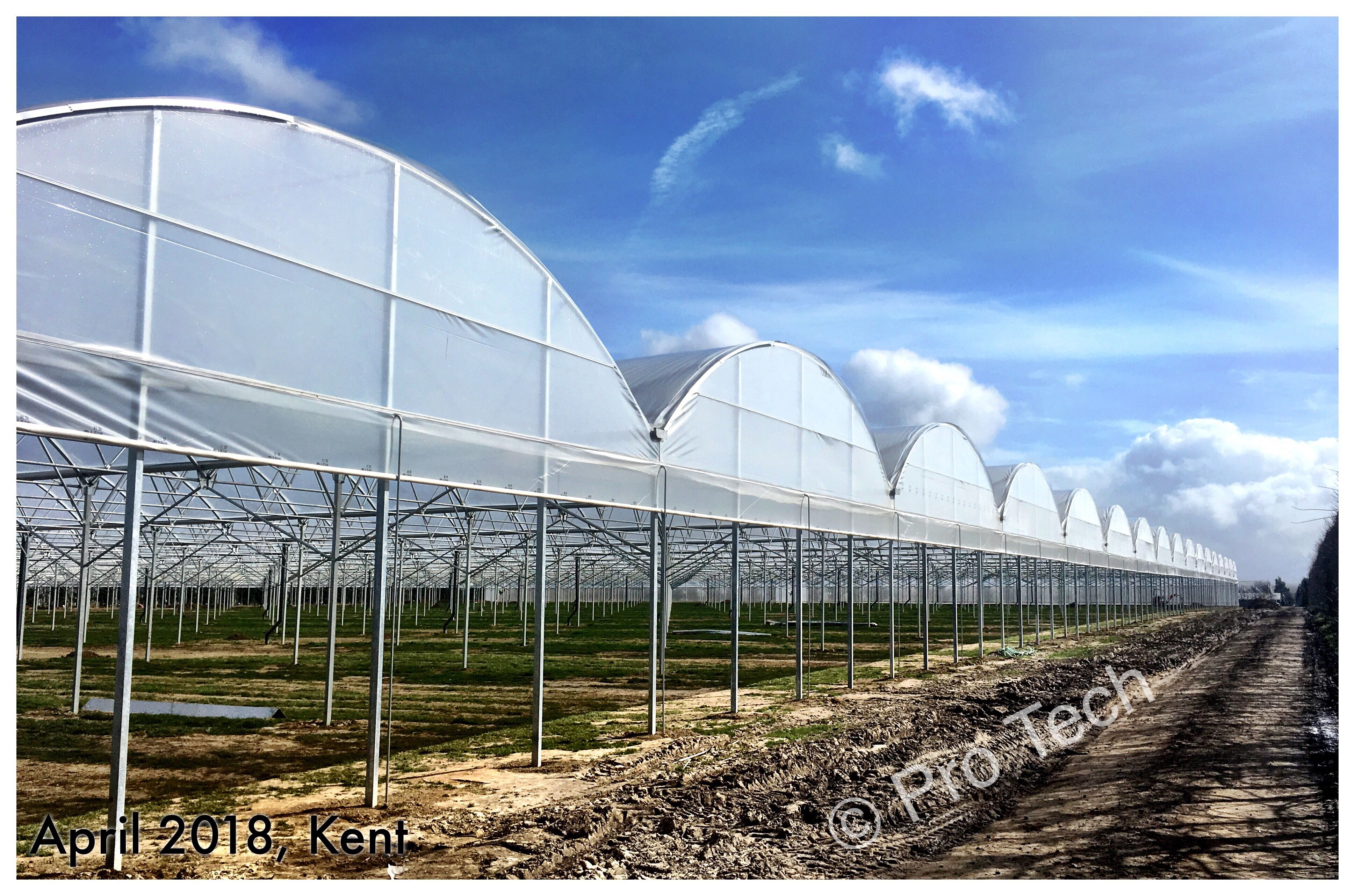 Greenhouse installation in Kent | Greenhouse | Commercial greenhouse