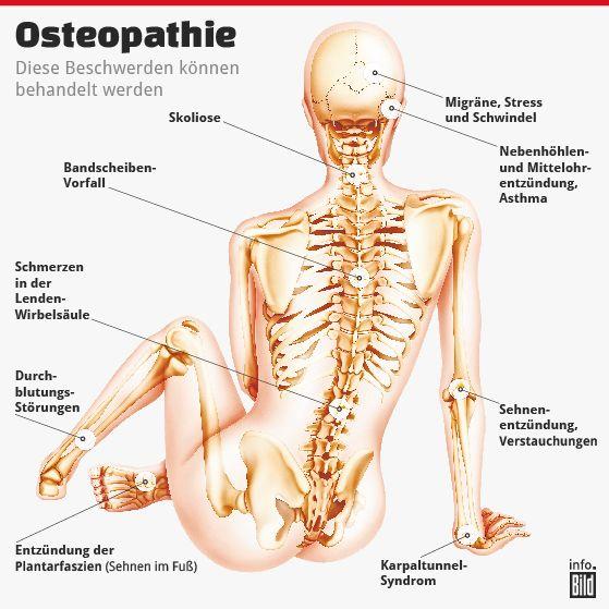 Kopf, Rücken, Gelenke: Was kann Osteopathie? | Анатомия | Pinterest ...