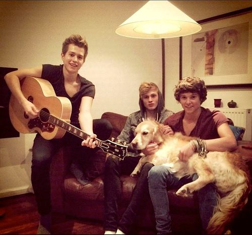 The Vamps| Jems, Brad, Tris and Jesse The dog