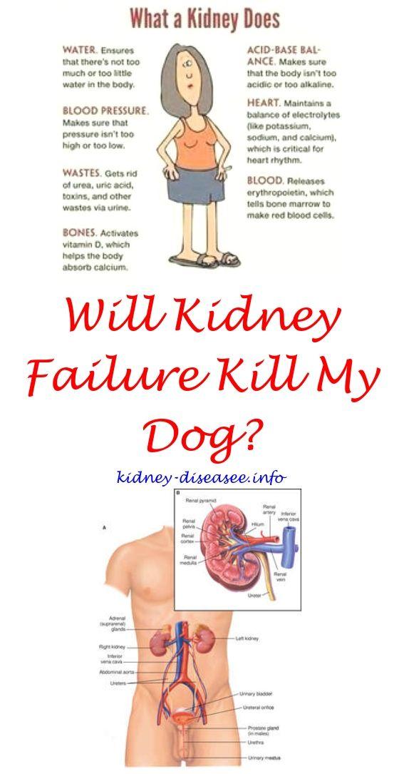 Kidney Disease Symptoms Watches Renal Diet Kidney Disease And