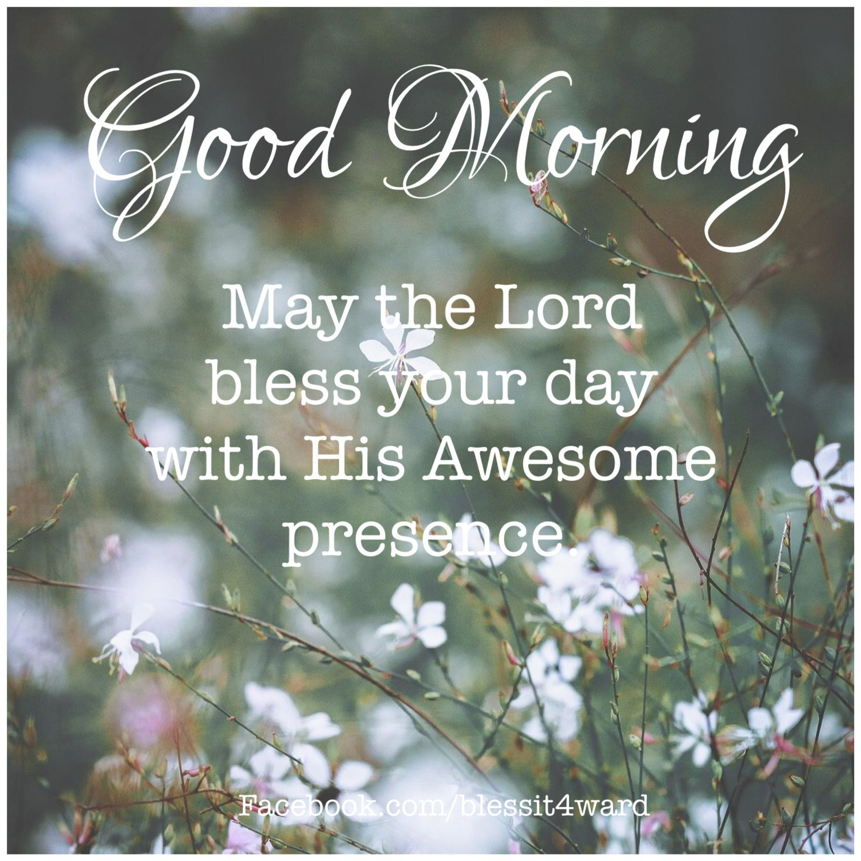 May The Lord Bless You With His Awesome Presence Today Good Morning Cards Morning Scripture Morning Wishes Quotes