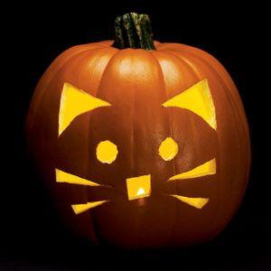 Kitty Cat Pumpkin Carving Pumpkin Ideas Pinterest Pumpkin