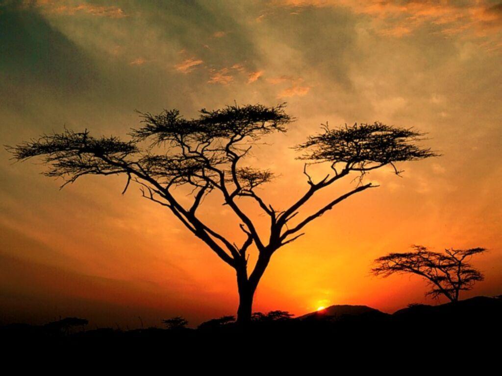 30 Beautiful Sunsets From Around The World Papier Peint