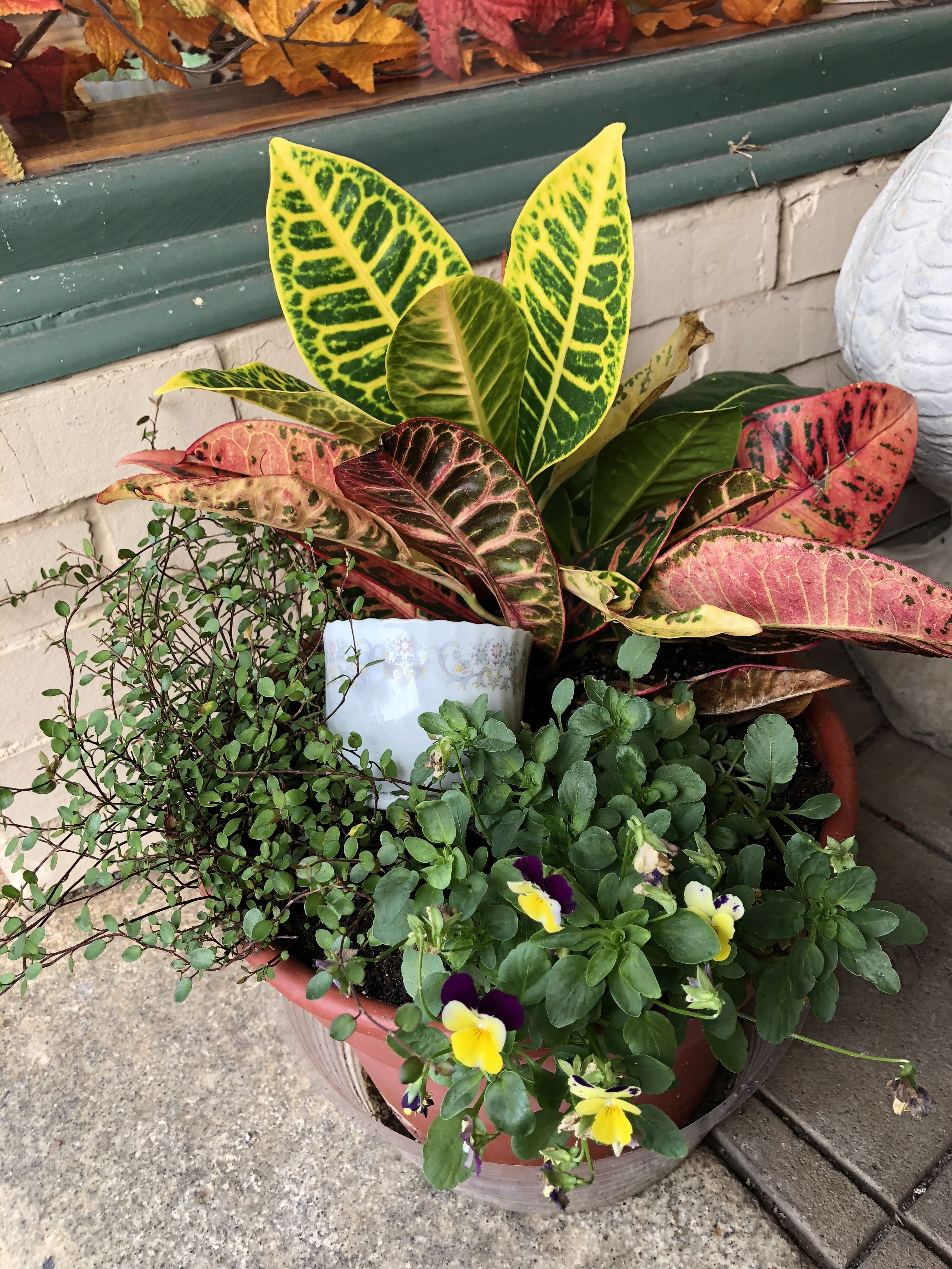 Planter at lauras tea room ridgeway sc tea room