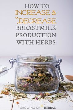 How To Increase and Decrease Breastmilk Production With Herbs | Growing Up Herbal | Need to increase or decrease your breastmilk supply? Here are herbs to help.