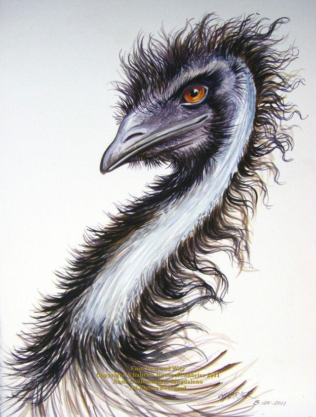Emu painting