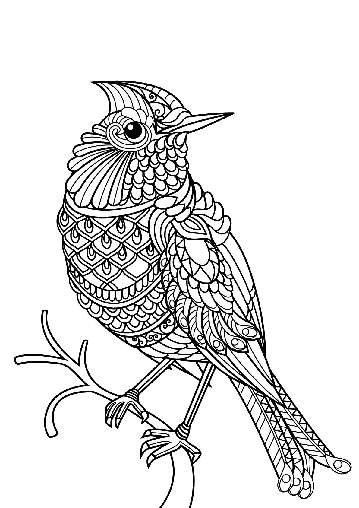 Bird With Complex And Beautiful Patterns From The Gallery Birds Bird Coloring Pages Farm Animal Coloring Pages Mandala Coloring Pages