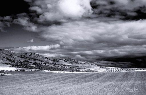 """""""Llanuras manchegas con el horizonte sin fin."""" de Marta Celis Rodriguez @ VirtualGallery.com"""