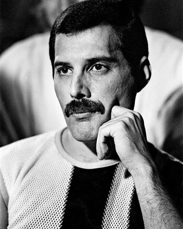 Instagram Freddie Mercury Queen Freddie Mercury Mercury