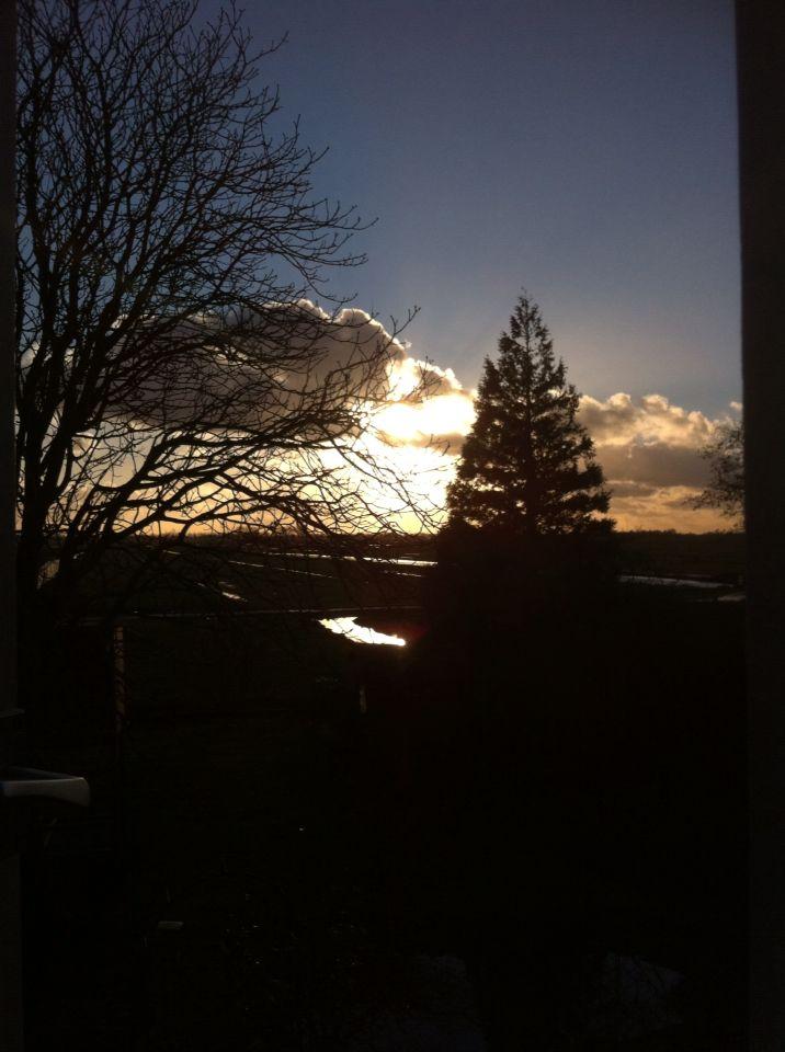 #100happydays day 74. Blij om de zon nog even te zien na al die regen, hagel en natte sneeuw.