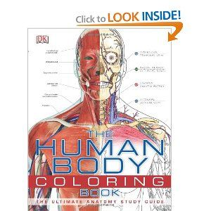the human body coloring book dk publishing 9780756682347 amazoncom books - Human Body Coloring Book
