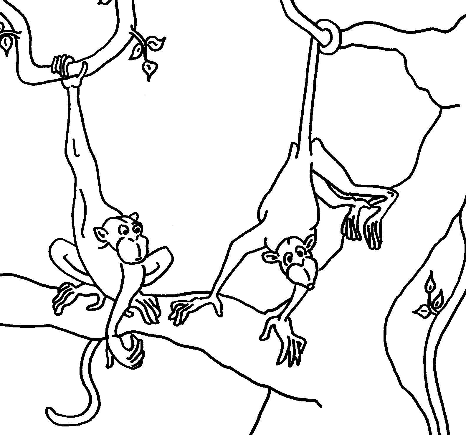 Einzigartig Malvorlage Tiere In Afrika   Monkey coloring ...