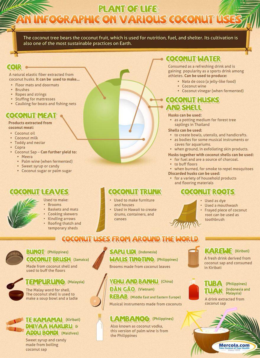 Amazing uses of coconut