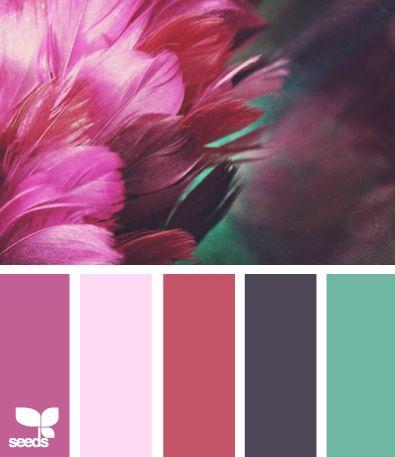 Pin by jill martinez on Paint samples | Pinterest | Peacock logo