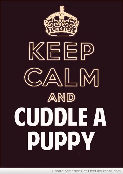 Keep Calm Cuddle A Puppy Great Advice Keep Calm Quotes Keep Calm Funny Calm Quotes