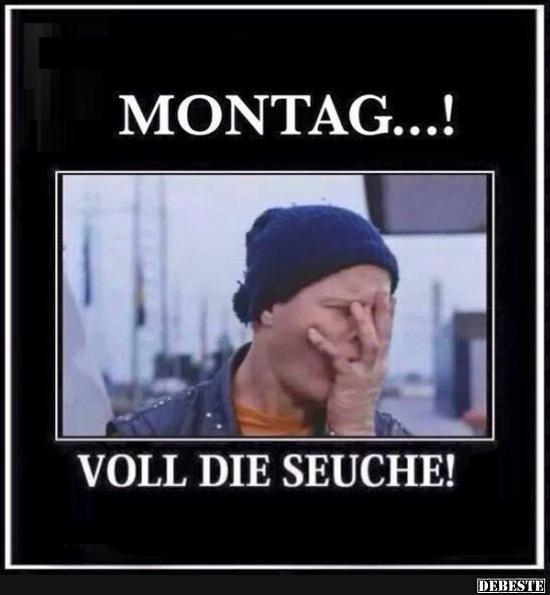 Montag..! Voll die Seuche! | Lustige Bilder, Sprüche, Witze, echt