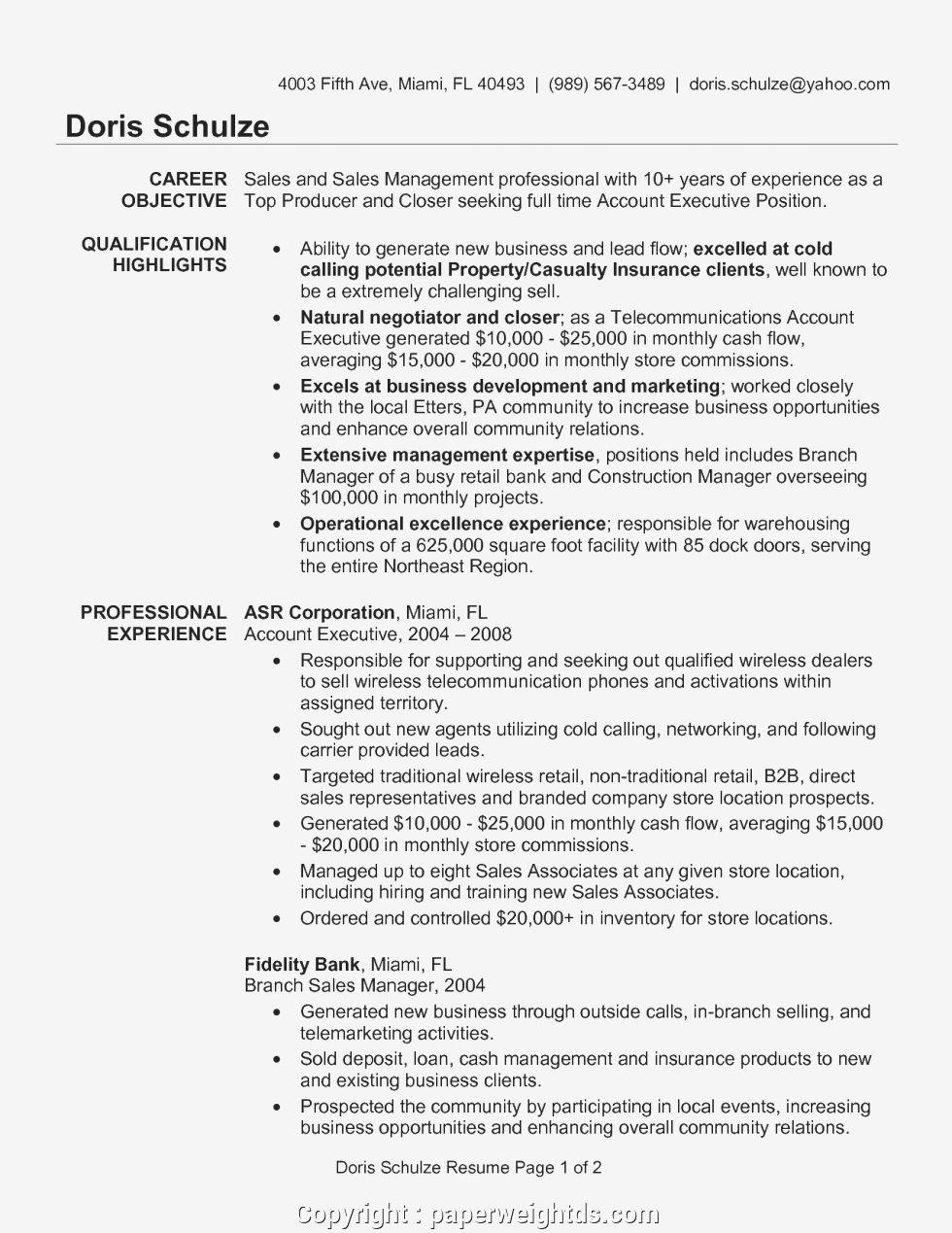 Account Executive Sample Resume Account Manager Sample Resume Account Executive Resume Examples Key A Resume Examples Best Resume Template Account Executive