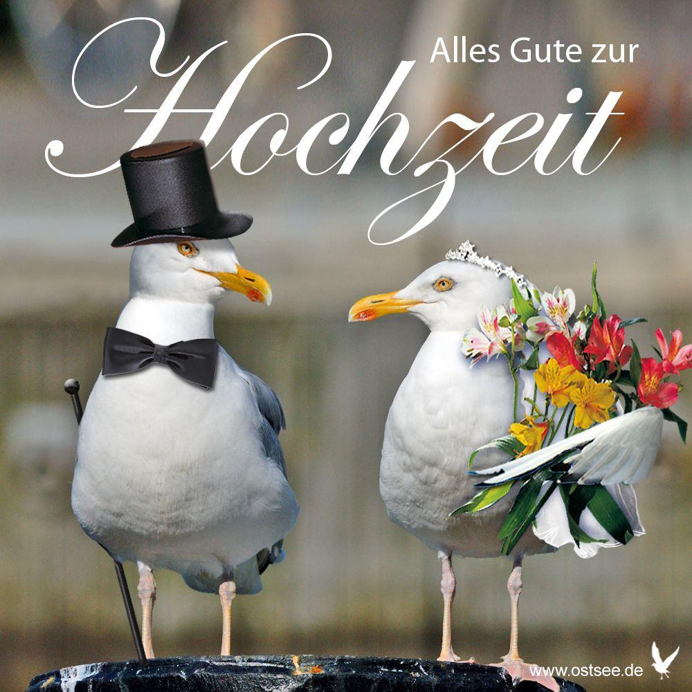 Gluckwunsch Zur Hochzeit Gluckwunsche Hochzeit Alles Gute Zur Hochzeit Hochzeit