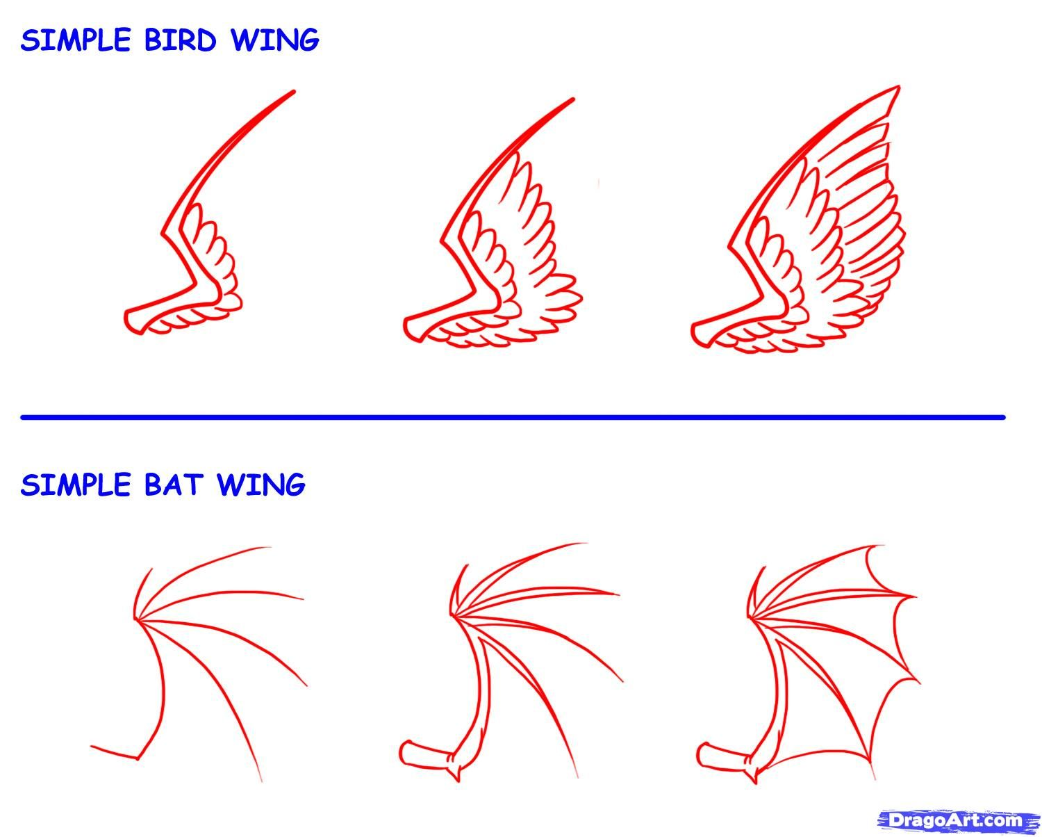 How To Draw Wings Step By Step  By Dawn 48 How To Draw A Minecraft