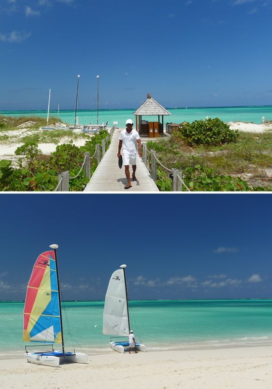 parrot cay turks and caicos myseastory pinterest turks and rh pinterest co uk