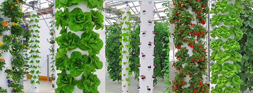 Aeroponic Tower Garden Sustainable Aeroponic Rooftop Garden
