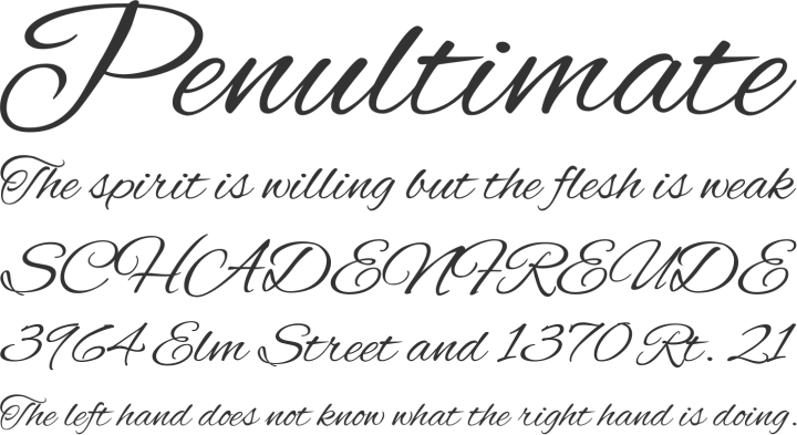 Alex Brush Is A Formal Very Elegant Cursive Handwriting Font Perfect For Invitations And Pinterest Images Thanks To Variable Line Thickness Its Legible