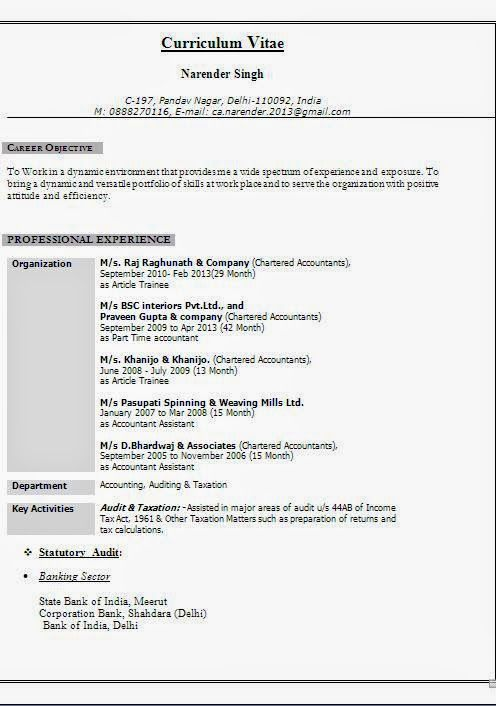 curriculum vitae doc word Sample Template Example of Excellent - resume format for accountant