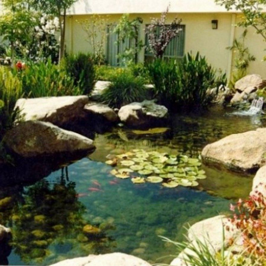 Easy Koi Pond Designs You Can Build To Accent Your Gardens ...