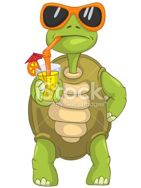 Cartoon Character Funny Turtle Isolated On White Background