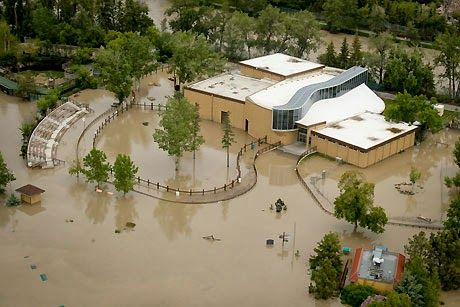 Rebuild Calgary Calgary Zoo Still Work To Be Done Flood Animals Click The Image For Details Zoo Calgary House Styles
