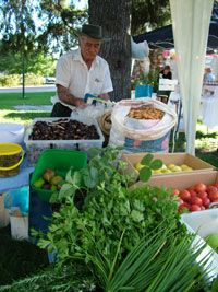 Farm markets..this one at Mudgee NSW