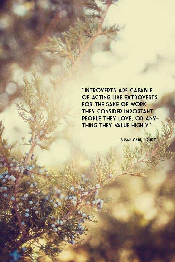 Quiet - Susan Cain | introvert