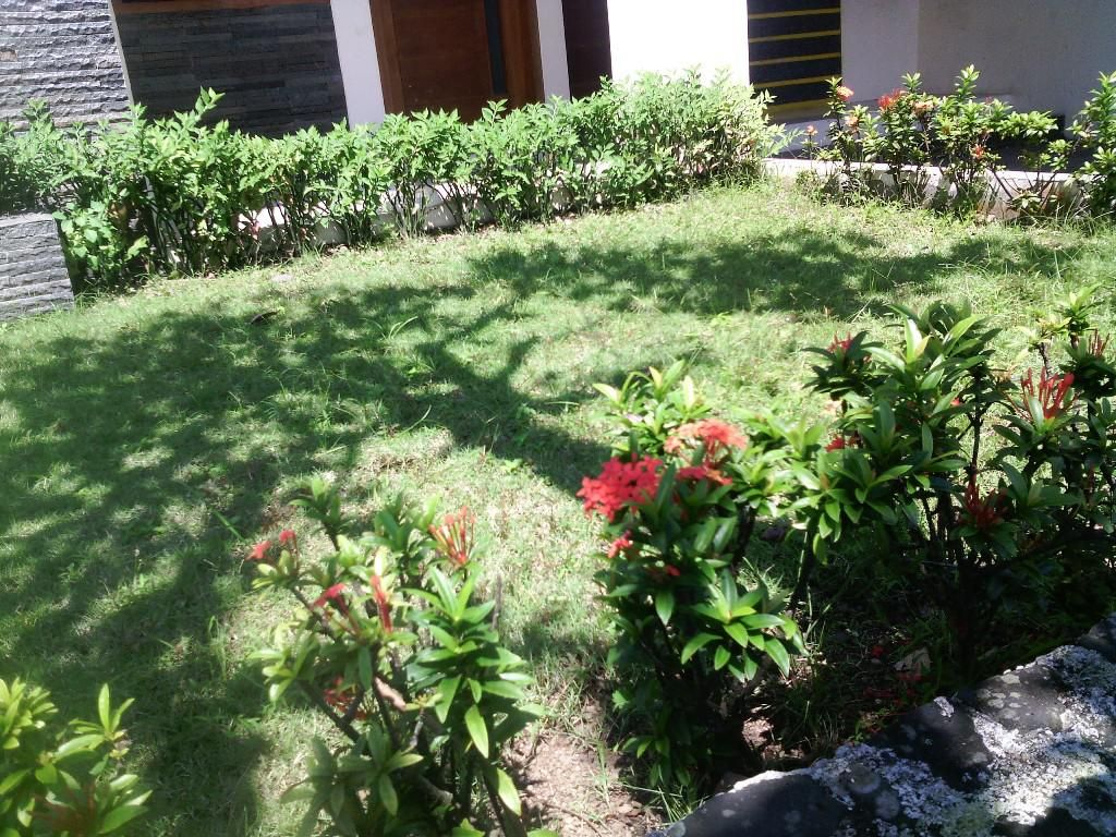 simple diy landscaping for beginners and dummies ideas do not need