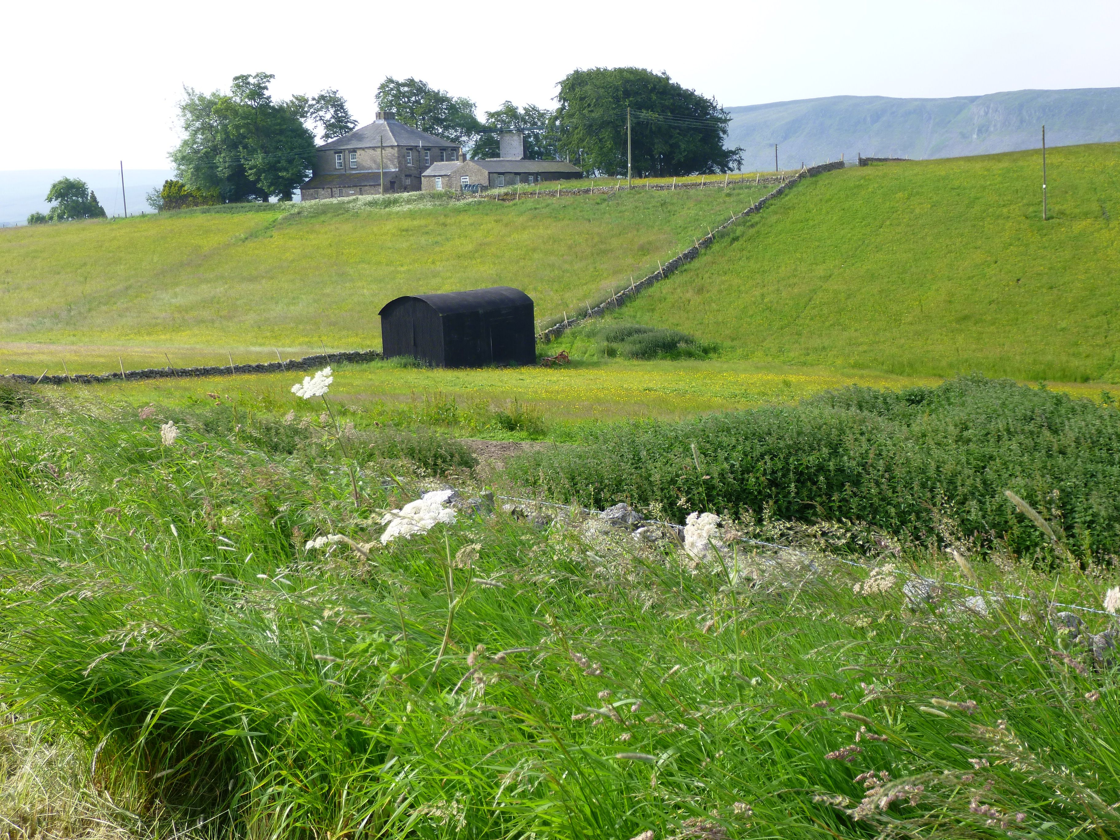 Countryside scene near Middleton in Teesdale, North-East England