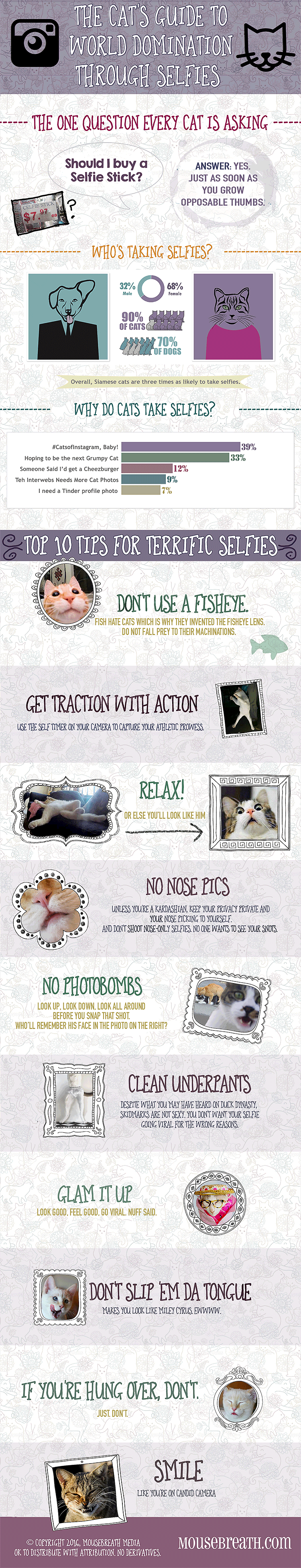 Infographic How cats can achieve world domination with