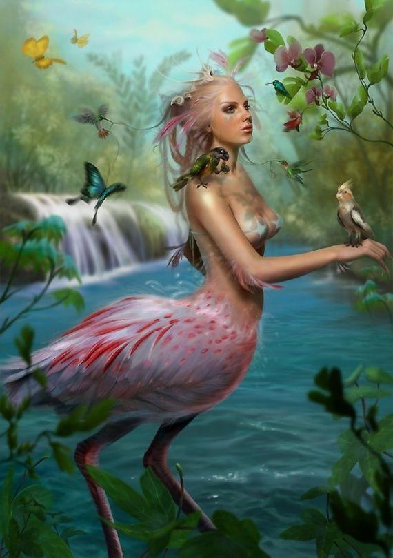Sophia Kolokouri - The Lady Bird