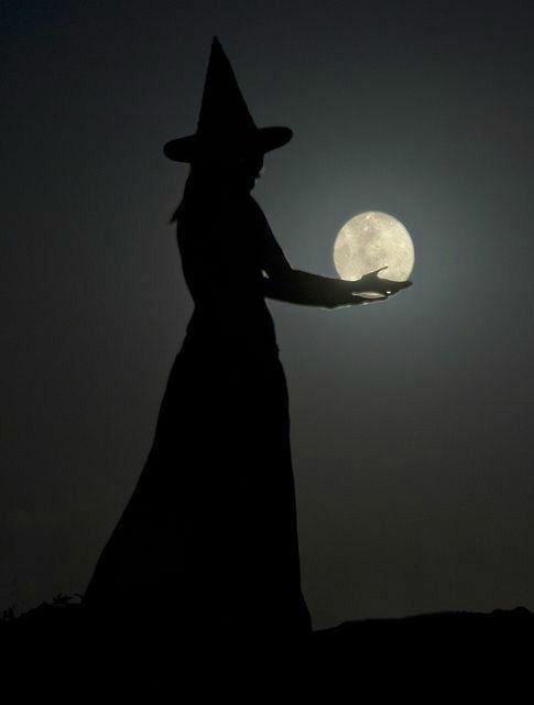 Pin De Terry Bowen En Bewitched Ilustración De Halloween Bruja Dibujo Wicca Brujas