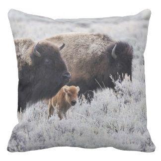 De Bizon van de koe en van het Kalf, Yellowstone Sierkussen