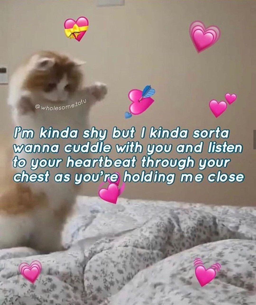 Pin By Banana Milk On 3 Love Memes For Him Cute Love Memes Cute Memes
