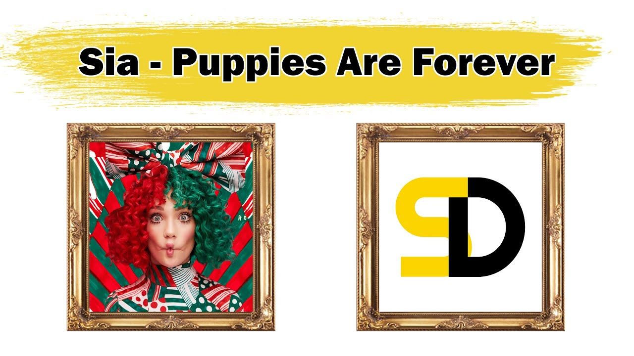 Funny Puppies Are Forever Song in 2020 Puppies funny