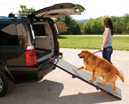 Today's featured item is a Pet Gear tri-fold pet ramp